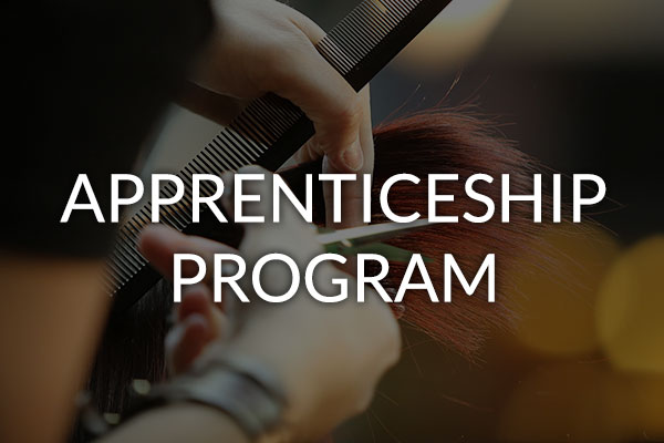 career apprenticeship program