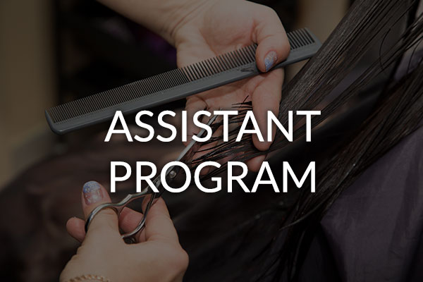 career assistant program